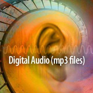 Body of Health mp3 audio image